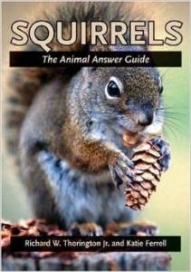 squirrelbook